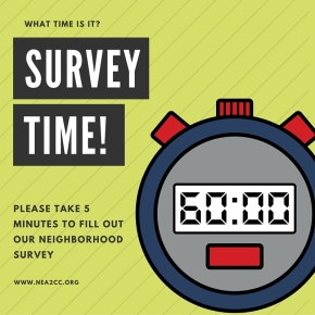 neA2 Neighborhood Survey
